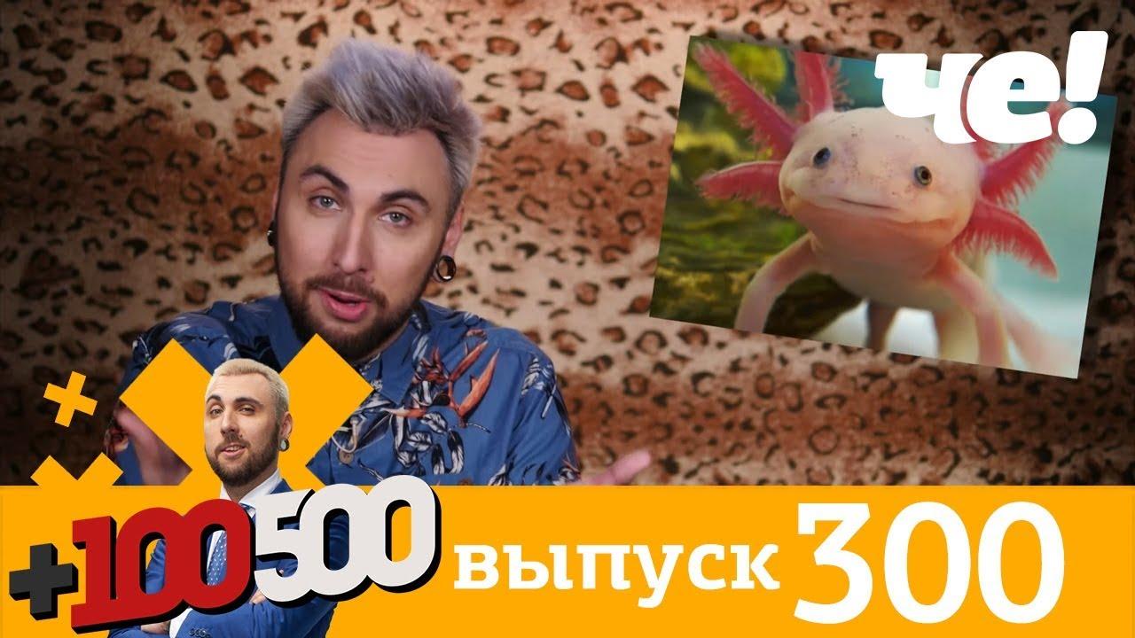 +100500   Выпуск 300   Новый 8 сезон на телеканале Че!
